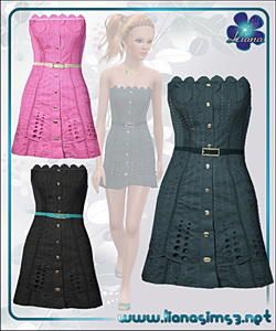 Tube embroidered dress with skinny belt, recolorable